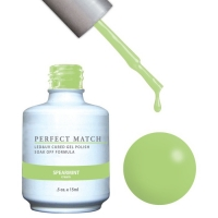 Perfect Match set of Spearmint PMS120