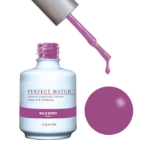 Perfect Match set of Wild Berry PMS131